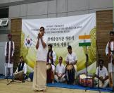 Festival of India in Korea - 07